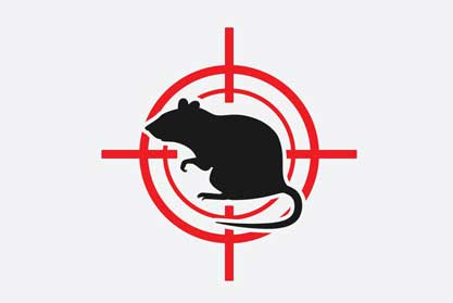 pest-control-services-hire